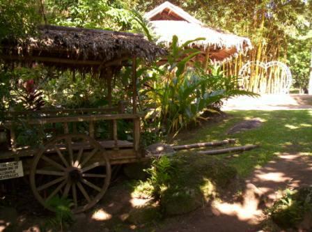 forrest-camp-dumaguete-city-11